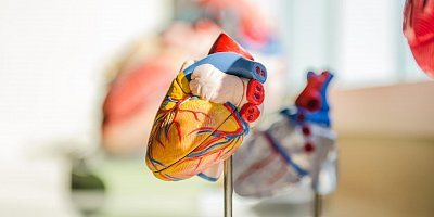 Rehabilitation program for cardiac patients