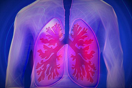 №2 - Diseases of the respiratory system